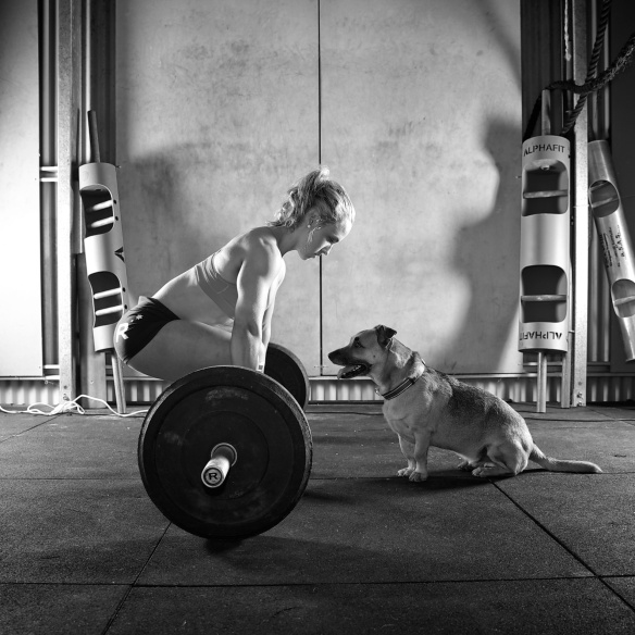 Raw - WOD Dogs 1819